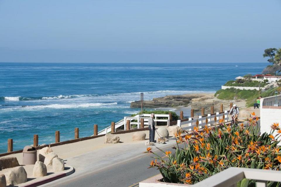 Oceanfront at Windansea Surf Break - La Jolla Vacation Rental